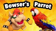 SML Movie Bowser's Parrot!