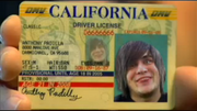 Anthony's Driver's License