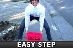 Easystep big