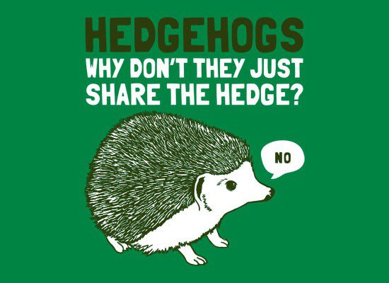 File:Hedgehogs.jpg