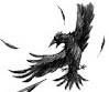 File:Vfd crow-0.jpg