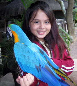 Zara's With A Parrot From Zoo