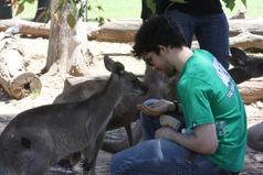 Kangaroooo