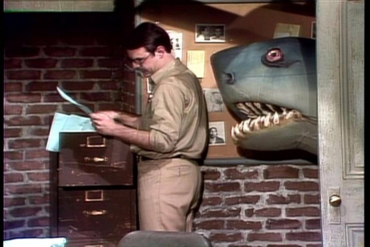 Landshark Saturday Night Live Wiki Fandom Powered By Wikia