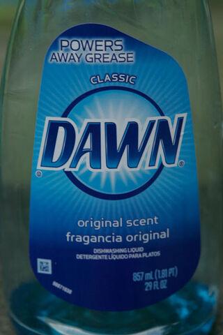 File:Dawn Non-Ultra Front MG 0570.JPG