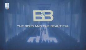 B&B2011