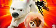 Bolt-hits-Disneys-Blu-ray-3D-and-DVD-Combo-Pack-on-November-8th