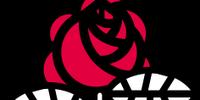 Socialist Party(France)