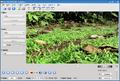Avidemux 2.5.2-Linux KDE.png