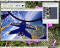 CinePaint 0.25-Linux-Xfce.png