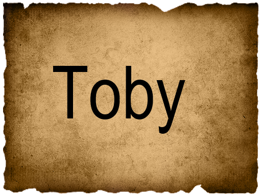 File:TobyVote3.png