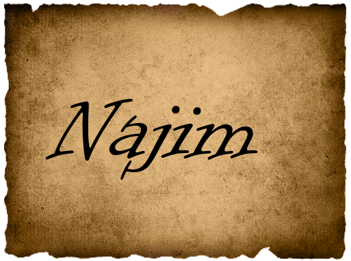File:NajimVote.png