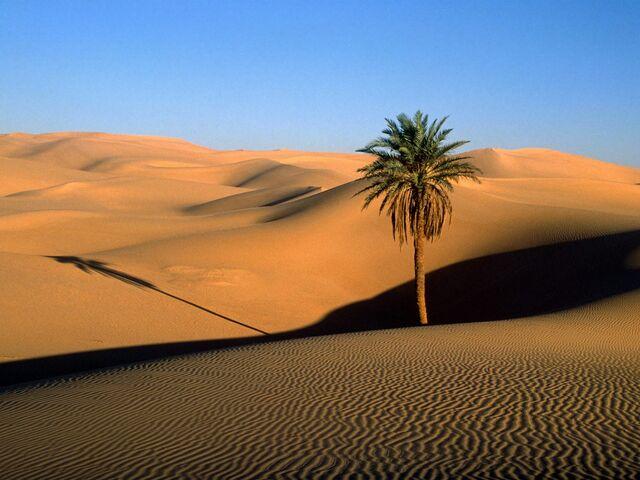 File:Solaranian desert.jpg