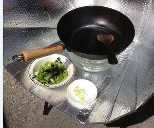 Stir fry setup Caicai Wu 2013