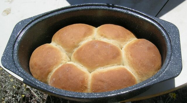 File:Bread browns.jpg