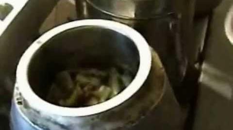 Chari solar trough cooker 3-2013