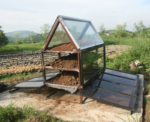 Solar dryer from recycled glass, Joshua Guinto, 7-16