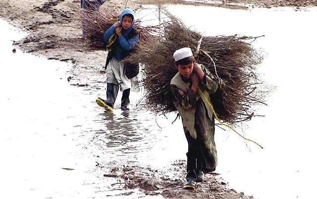 File:Afghan children carrying brush.jpg