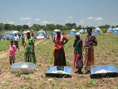 File:Solar cooking uganda.png