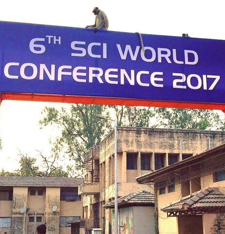 File:SCI Conference sign 2017 cropped.jpg