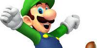 Luigi Forgotten