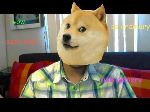 File:Dogeordinarygamers.jpg