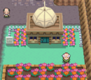 The Catacombs of Lavender Town