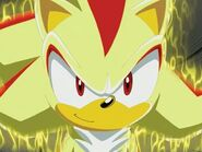 Super Shadow smiling