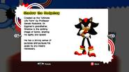 Shadow profile SG