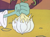The Hooten-Toot Garlic