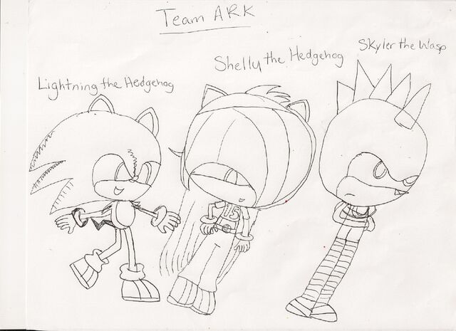 File:Team ARK SH2.jpg