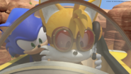 Sonic and Tails on the plane