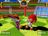 Fang vs Knuckles in Sonic Fighters