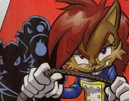 AntiSally-sonic-the-hedgehog-27770828-415-325
