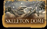Skeleton Dome icon