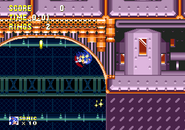 Upward guiding loop sonic and knuckles