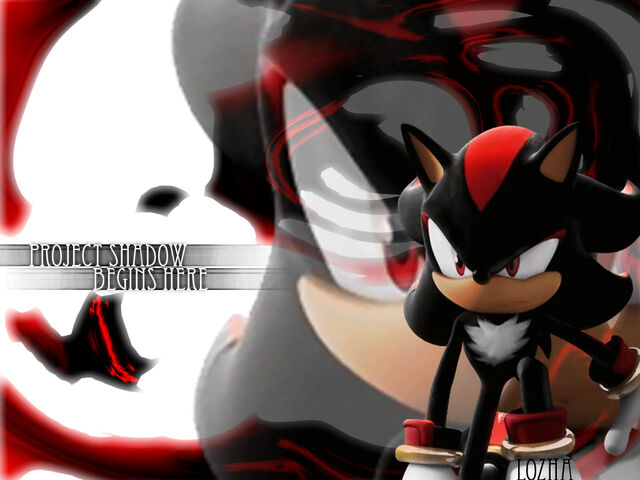 File:Project Shadow Begins by Lozha.jpg