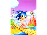 GG Sonic 1