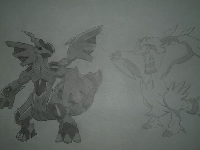 File:Reshiram and zekrom.draw.jpg