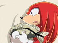 Knuckles094