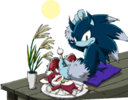 Sonic Channel - Sonic the Werehog & Chip 2013