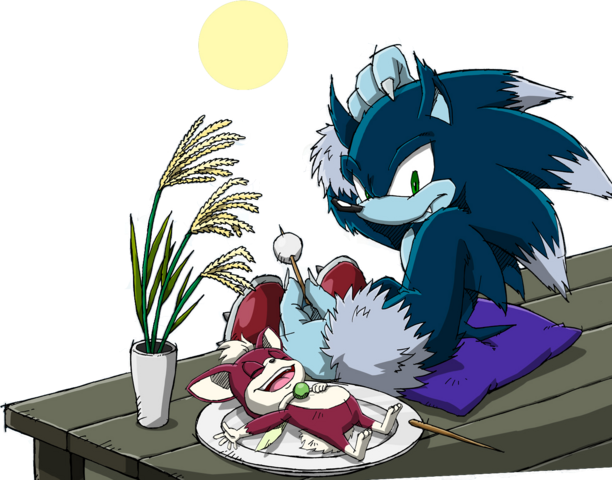 File:Sonic Channel - Sonic the Werehog & Chip 2013.png