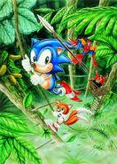 Sonic Hedgehog 2 - Artwork - (6)