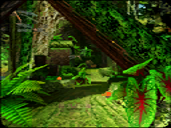 Green Forest (2P Select)