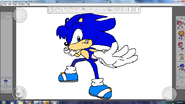 Anthony the Hedgehog Redsign By Metal