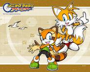 Sonic Rush Adventure Marine and Tails wallpaper