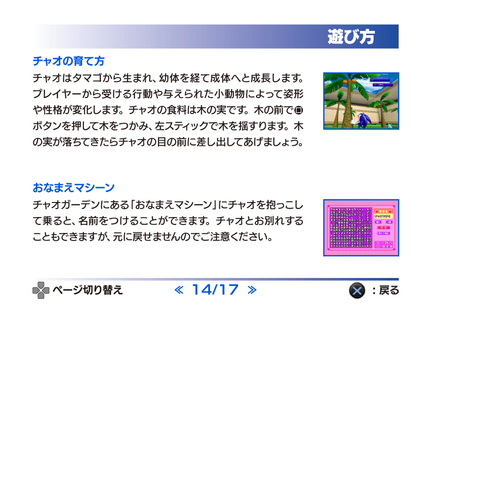 File:SonicAdventureDX2011 PS3Manual14.png