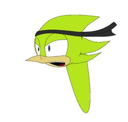 Super captain bird