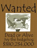 Wanted 47