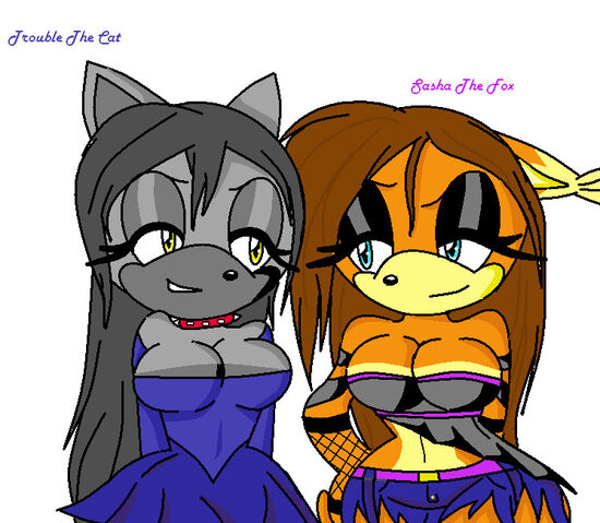 File:Art trade the cat and the fox by 0sashathefox0-d74txb5.jpg